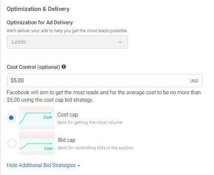 Optimization options including cost or bid cap